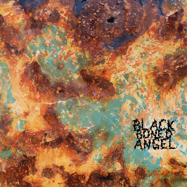 Black Boned Angel