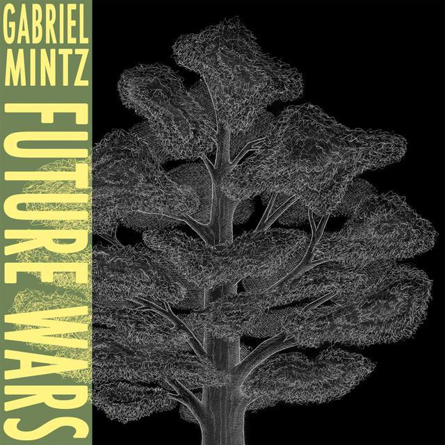Gabriel Mintz