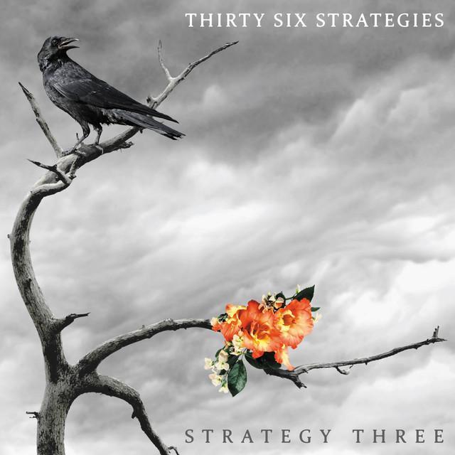 Thirty Six Strategies