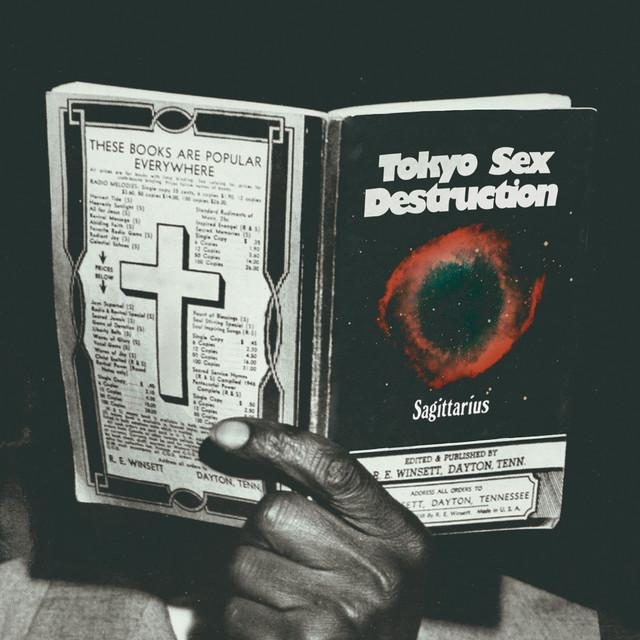 Tokyo Sex Destruction