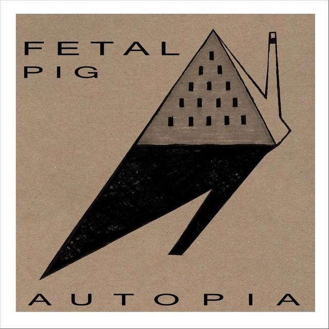 Fetal Pig