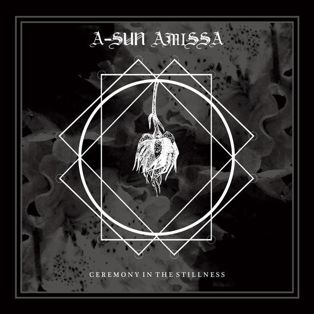 A-Sun Amissa