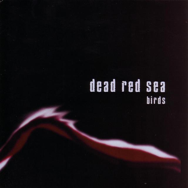 Dead Red Sea