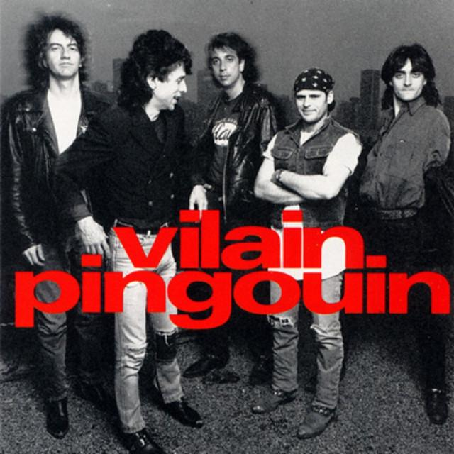 Vilain Pingouin