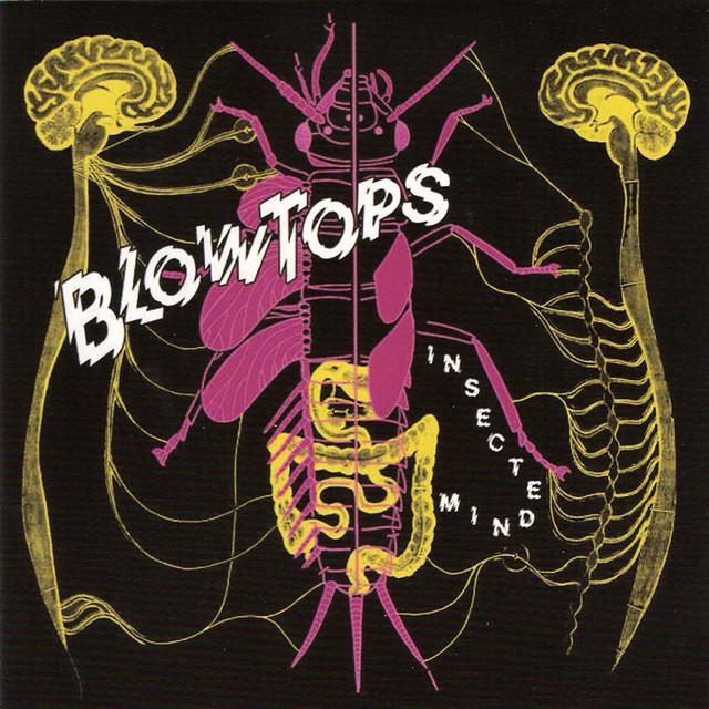 Blowtops