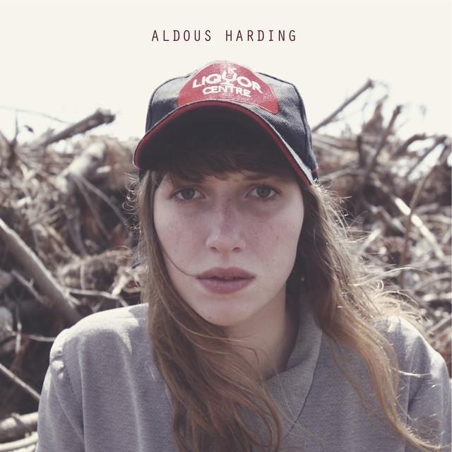 Aldous Harding