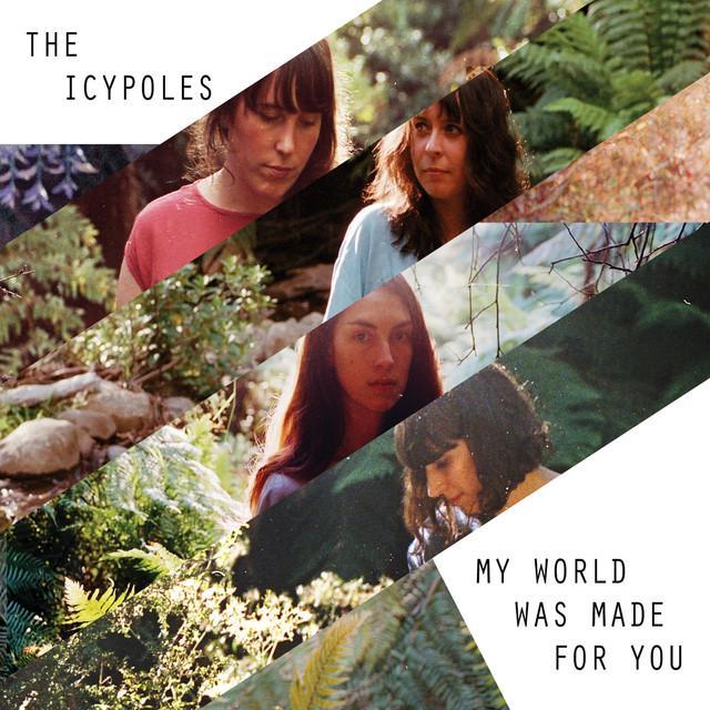 Icypoles