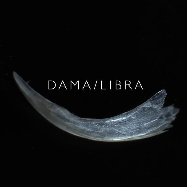 DAMA / LIBRA