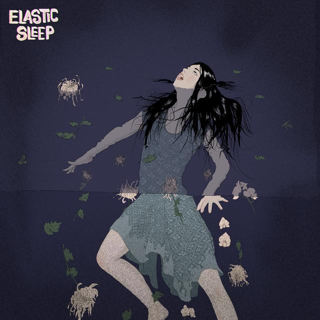 Elastic Sleep