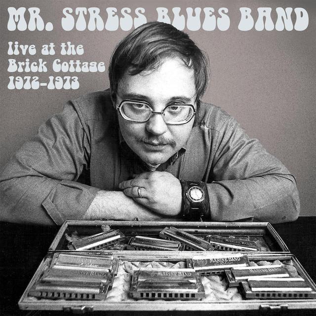 MR. STRESS BLUES BAND