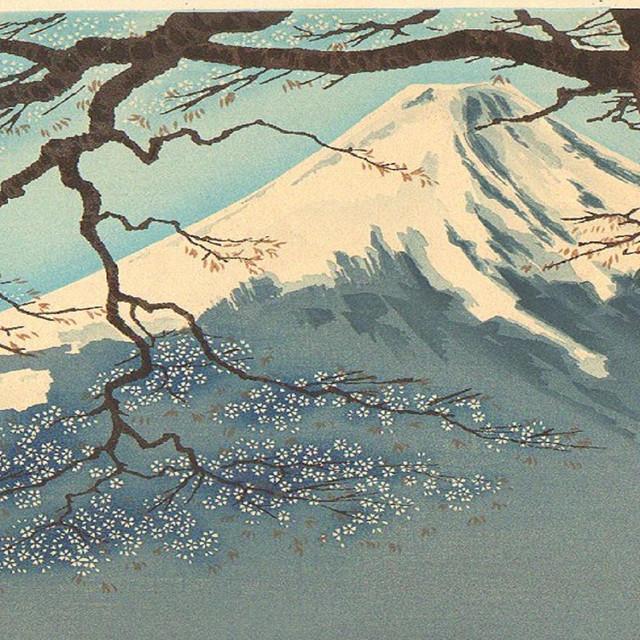 Mt. Fujitive