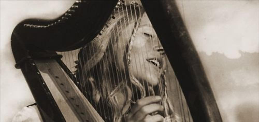 Carol Kleyn