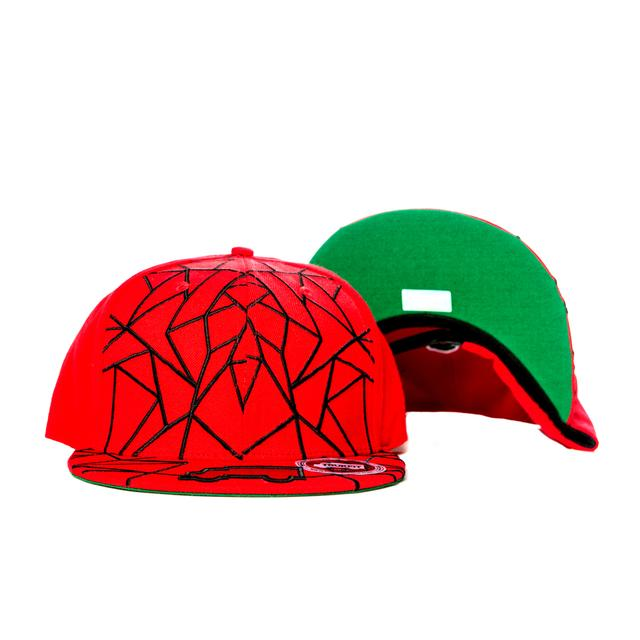 Young Money Trukfit Truk Line 17 Hat