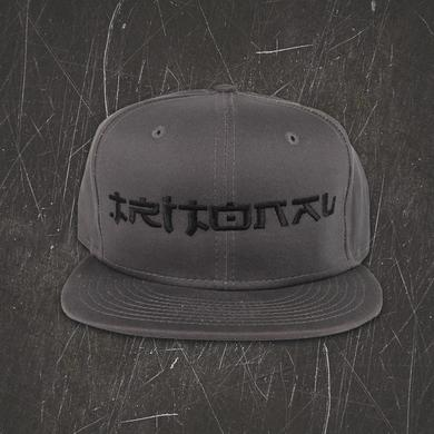 Tritonal Painting With Dreams Snapback