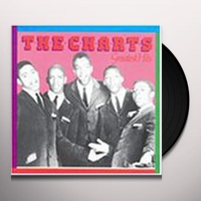 Charts GREATEST HITS Vinyl Record