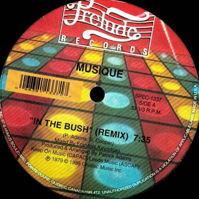 Musique IN THE BUSH Vinyl Record
