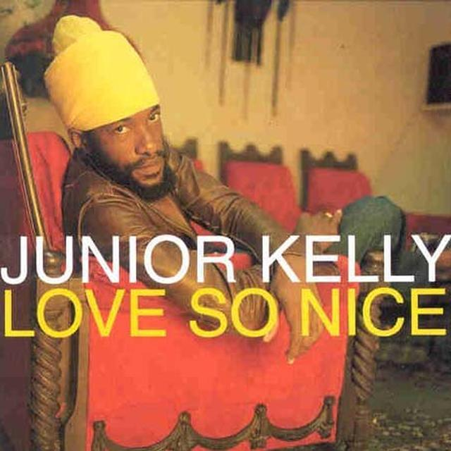 Junior Kelly STANDING FIRM Vinyl Record