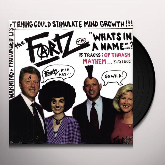 The Fartz WHAT'S IN A NAME Vinyl Record