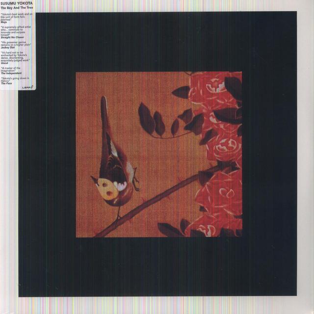 Susumu Yokota BOY & TREE (Vinyl)