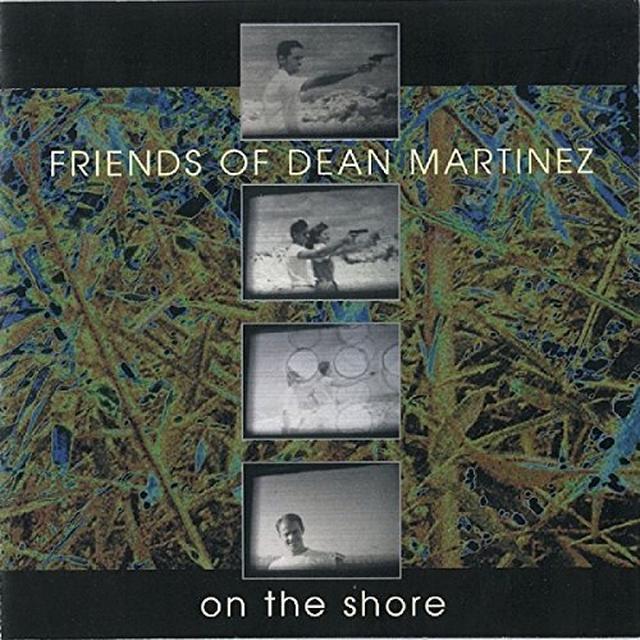 FRIENDS DEAN MARTINEZ ON THE SHORE Vinyl Record
