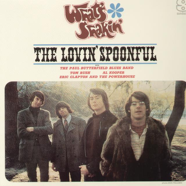 WHAT'S SHAKIN / VARIOUS Vinyl Record