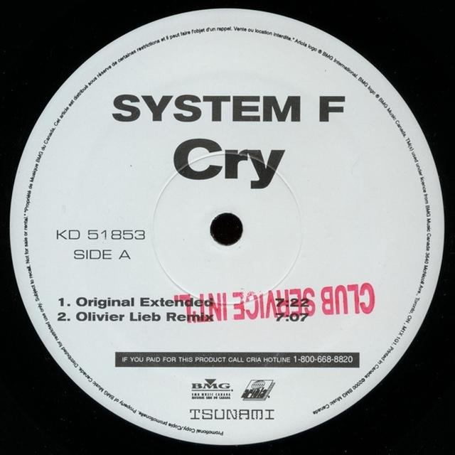 System ------ Vinyl Record
