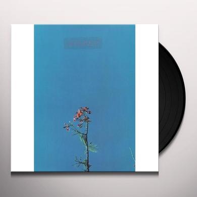 Joanna Newsom & THE YS STREET BAND EP (EP) Vinyl Record