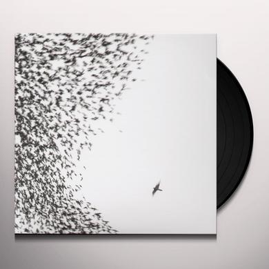Wilco SKY BLUE SKY Vinyl Record
