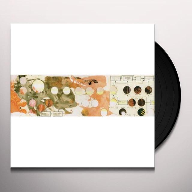 Burnt Friedman FIRST NIGHT FOREVER Vinyl Record