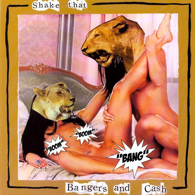 Spank Rock & Benny Blanco Are Bangers & Cash SHAKE THAT Vinyl Record