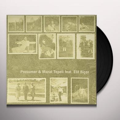 Prosumer & Murat Tepeli TURN AROUND Vinyl Record