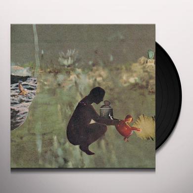 Psycho & Birds WE'VE MOVED Vinyl Record