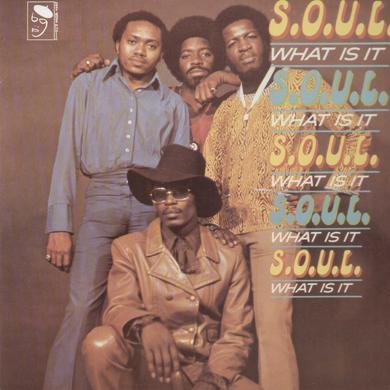 S.O.U.L. SOUL WHAT IS IT Vinyl Record