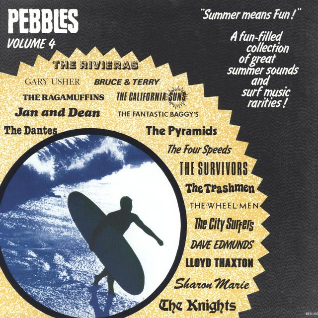 PEBBLES 4 / VARIOUS Vinyl Record