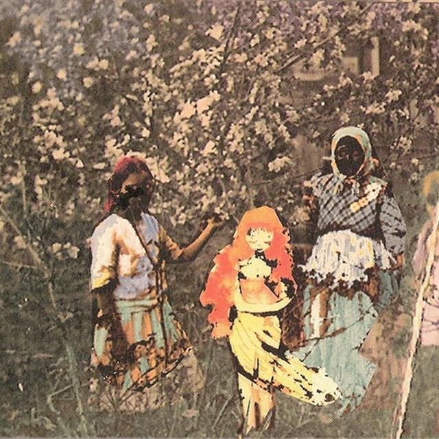 Paavoharju LAULU LAAKSON KUKISTA Vinyl Record