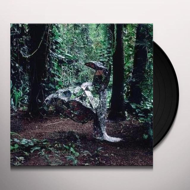 Css DONKEY Vinyl Record