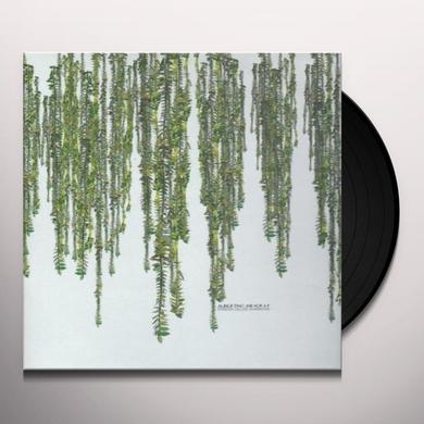 Guido Schneider / Andre Galluzzi / Flo Schirmacher ALBERTINO & NORA P Vinyl Record