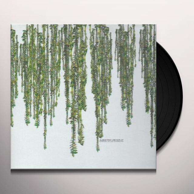 Guido Schneider / Andre Galluzzi / Flo Schirmacher ALBERTINO & NORA P (EP) Vinyl Record