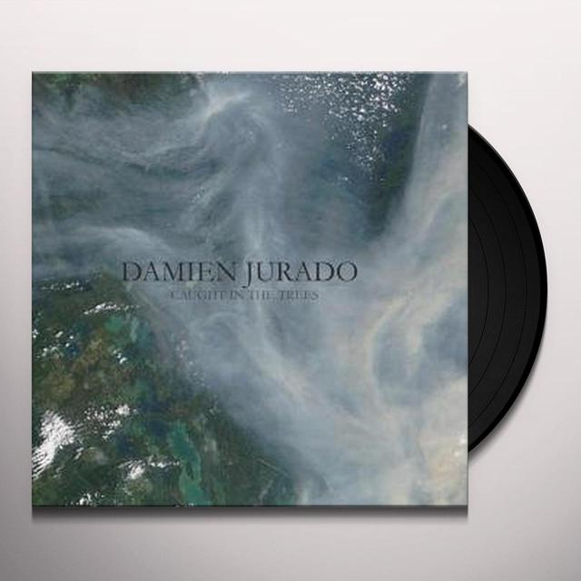Damien Jurado CAUGHT IN THE TREES Vinyl Record