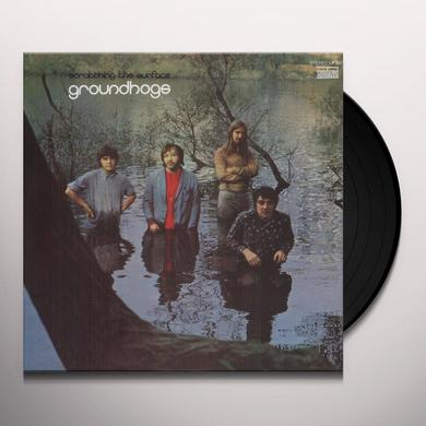 The Groundhogs SCRATCHING THE SURFACE Vinyl Record
