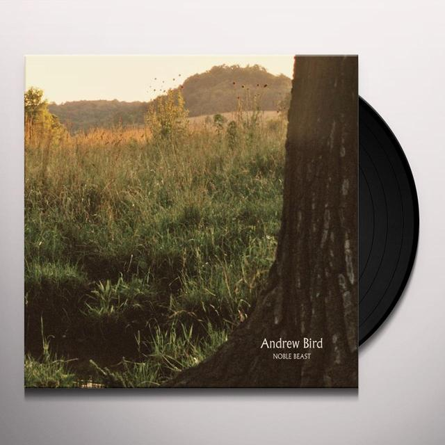 Andrew Bird NOBLE BEAST Vinyl Record