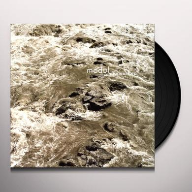 Modul PIONEERS Vinyl Record