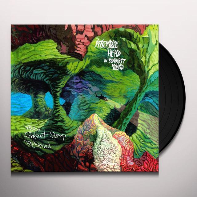 Assemble Head In Sunburst Sound WHEN SWEET SLEEP RETURNED Vinyl Record