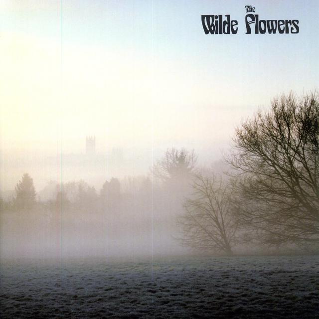 WILDE FLOWERS Vinyl Record - 180 Gram Pressing