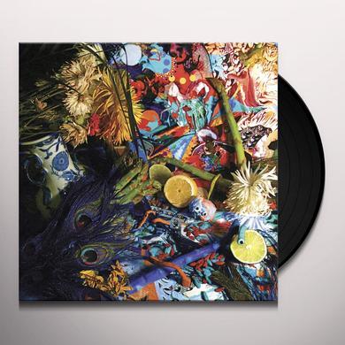 Animal Collective SUMMERTIME CLOTHES Vinyl Record