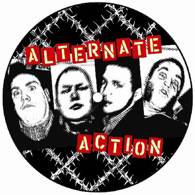Alternate Action WE'RE NOT LIKE YOU Vinyl Record - Picture Disc
