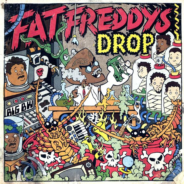 Fat Freddy's Drop DR BOONDIGGA & THE BIG BW Vinyl Record