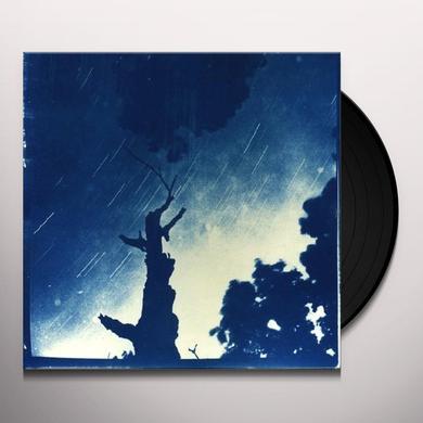Dragon Turtle / Goodnight Stars Goodnight Air SPLIT Vinyl Record