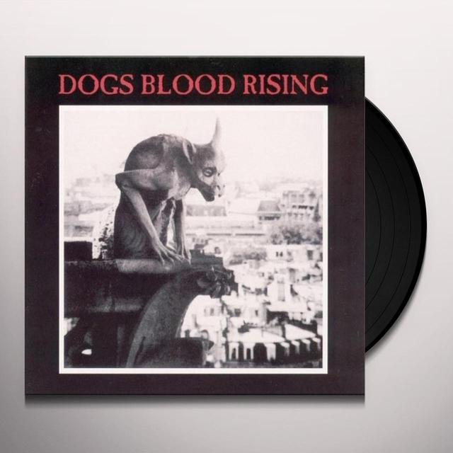 Current 93 DOGS BLOOD RISING Vinyl Record