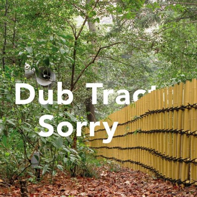 Dub Tractor SORRY Vinyl Record